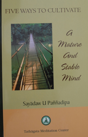The mature mind pdf